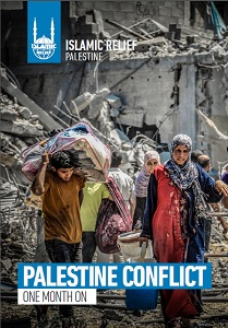 Palestine conflict one month on