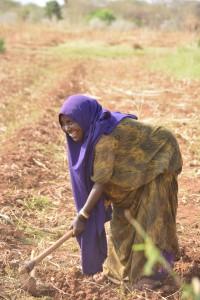Kenya supply Woman farmer 1